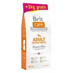 Karma sucha dla psa Brit Care Adult Medium Lamb & Rice 12+2kg GRATIS