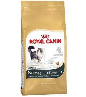 Karma sucha dla kota Royal Canin Adult Norwegian 400g