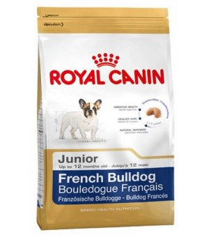 Karma sucha dla psa Royal Canin French Bulldog Junior 1kg