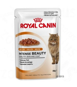 Karma mokra dla kota Royal Canin Intense Beauty - w galaretce - 85g