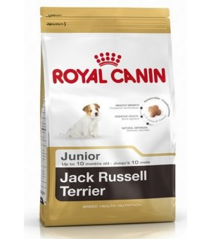 Karma sucha dla psa Royal Canin Jack Russell Terrier Junior 0,5kg