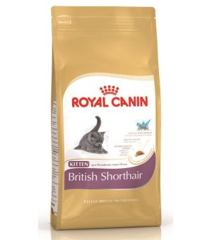 Karma sucha dla kota Royal Canin Kitten British Shorthair 2kg